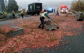 sagamore ma truck spills cranberries in accident on cape cod bridge