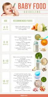best 25 introducing solids ideas on pinterest introducing baby