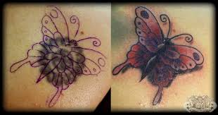 butterfly cover up by state of on deviantart