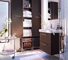 Bathroom Storage Ideas Ikea by Elegant Interior And Furniture Layouts Pictures 23 Best Bathroom