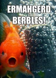 Ermahgerd Animal Memes - ermahgerd 08 pics