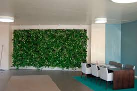 minimalist indoor green wall with beautiful plant with white