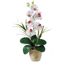 flowers arrangement nearly phalaenopsis silk orchid flower arrangement white