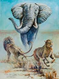 who u0027s your daddy now elephant and lions by virgil c stephens