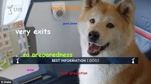 Top Doge Memes - delta air lines new pre flight safety video combines oscars 2016