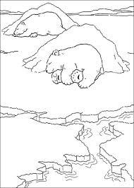 mommy polar bear daddy polar bear coloring free