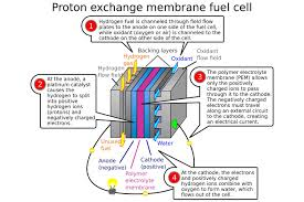 will hydrogen fuel cell cars ever be able to catch on digital