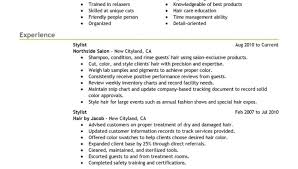 hair stylist resume cover letter by dwayne weisman writing