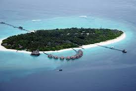 chaaya reef ellaidhoo maldives