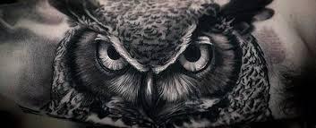 40 owl designs for nocturnal bird ideas