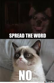 Frown Cat Meme - smile dog meet frown cat by elijah osborne 54 meme center