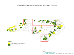 forest landbird legacy program audubon north carolina