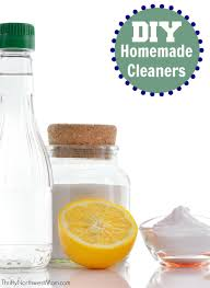 Black Mom Homemade by Diy Natural Household Cleaners How To Make Them Thrifty Nw Mom
