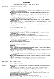 digital marketing resume digital marketing resume sles velvet