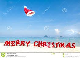 ocean beach christmas tree christmas trees 2017