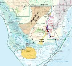 Florida Shark Attack Map Shark Attack Map Florida The Best Shark 2017