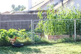 download planning your garden solidaria garden
