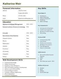 resume illustration resume manual testing experience resume
