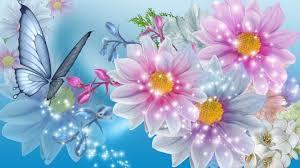 beautiful wallpapers of butterflies on wallpaperget com