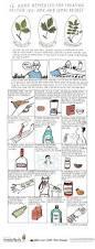 16 home remedies for treating poison ivy oak u0026 sumac rashes the