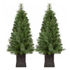2pk 3 5ft prelit artificial tree potted douglas fir clear