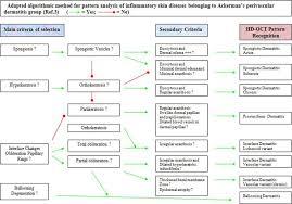 pattern of analysis adapted algorithmic method for pattern analysis of inflammatory skin