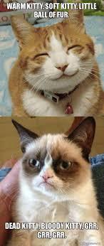 Soft Kitty Meme - warm kitty soft kitty little ball of fur dead kitty bloody kitty
