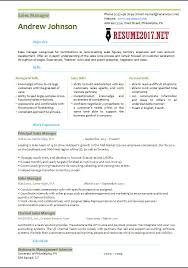Resume Format Sales And Marketing Sales Manager Resume Template 2017 U2022