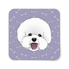 bichon frise cute bichon frise illustration stickers zazzle