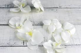 white orchid flower white orchid garland 6ft 10 orchids