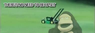Lawn Mower Meme - image 841029 flying lawnmower know your meme