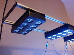 led aquarium lights for reef tanks how to do it yourself light fixture hydra saltwater reef tank nano