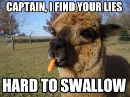 Alpaca Sheep Meme - new alpaca sheep meme random thoughts thread page 2410 scion fr s