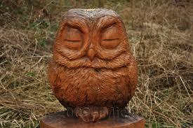 panoramio photo of owl wood
