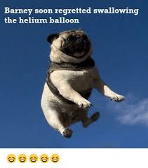 Balloon Memes - 25 best memes about helium balloon helium balloon memes