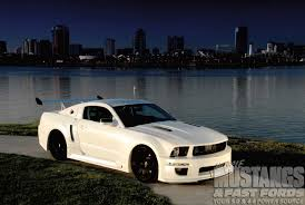 2008 mustang gt 2008 mustang gt wide angle photo image gallery