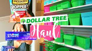 huge dollar tree haul february 2017 spring organizing bins