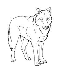 realistic wolf coloring pages print 00 wolf