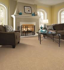Big Living Room Rugs Living Room Carpet Agreeable The Living Room Carpet Home Design