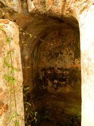crancanore fort chalakudi