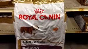 royal canin bulldog food pets mart trip english bulldog youtube