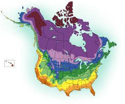 Climate Zones For Gardening - proven beauty plants for your climate