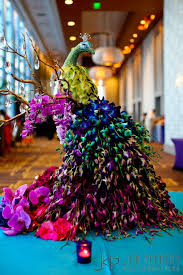 peacock wedding 6 brilliant ideas for a peacock theme for your sangeet or