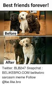 Friends Forever Meme - 25 best memes about best friends forever best friends forever