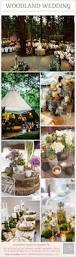 best 25 tree centrepiece wedding ideas on pinterest rustic