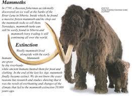 ice age mammoth u0026 mastodon teeth bluff country fossils
