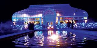when does the lights at the toledo zoo start holiday fun