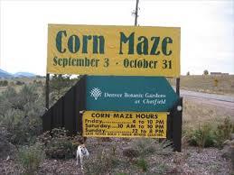 Denver Botanic Gardens Corn Maze Corn Maze At Denver Botanic Gardens At Chatfield Outdoor Mazes