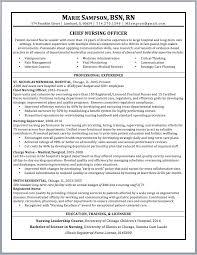 nursing resume sample and writing guide rwd