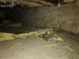 quality 1st basements crawl space repair photo album vapor